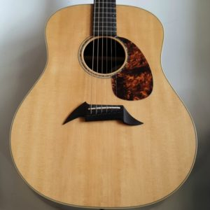 Breedlove American Series D20 SR Acoustic Guitar Made in USA 2007
