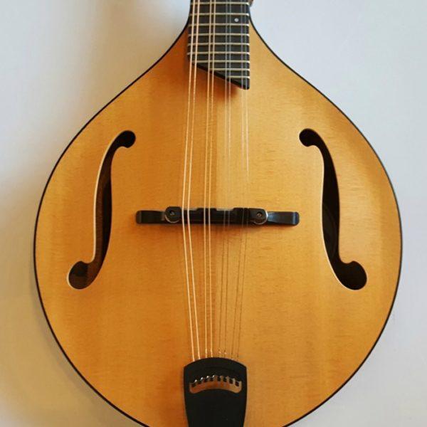 "Breedlove Spirit Mandolin ""OF"" Acoustic Electric 2009"