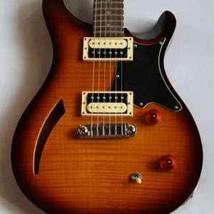 Paul Reed Smith PRS SE Custom 22 2009